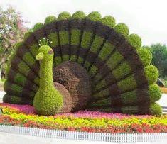 Sculpturi din plante. Museum, Green Life, Pics Art, Topiary, Pretty Flowers, Beautiful World, Cactus Plants, Amazing Art, Awesome