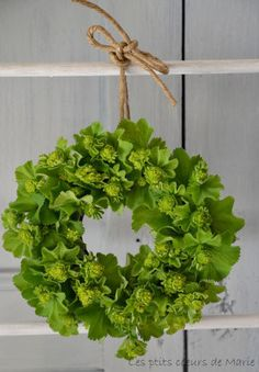 lady's mantle flower wreath, round form filled with flower foam