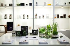 Perricone Md, Shelving, The Unit, Home Decor, Shelves, Decoration Home, Room Decor, Shelving Units, Home Interior Design