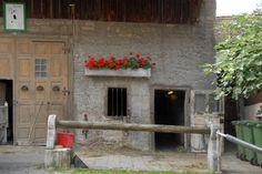 Muttenz Online: Photo Gallery A home in Muttenz
