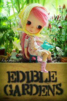 we ♥ edible gardens! by launshae, via Flickr