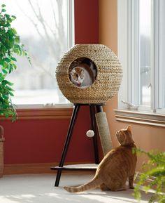 Esfera de gatos  Ela é uma mistura de casinha, móvel decorativo e parquinho de diversões. Estou falando da Natural Sphere Cat Tower uma divertida opção para quem tem bichanos em casa. http://www.bemlegaus.com/2015/06/esfera-de-felinos.html