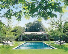 A landscaped pool area in the Hamptons.