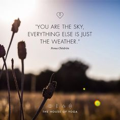 """You are the sky, everything else is just the weather."" - Pema Chodron"