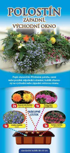 Dvorak a syn Plants, Gardening, Lawn And Garden, Flora, Plant, Horticulture, Square Foot Gardening, Garden Care