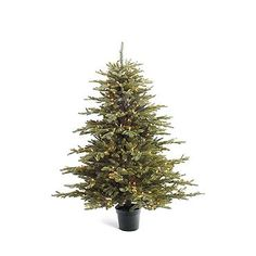 Deluxe Fraser Artificial Tabletop Tree