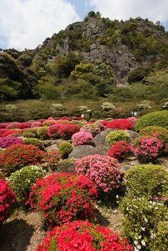 japanese gardeni mifuneyama | Four Seasons in Japan: azalea festivals