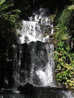 Pukekura Falls 2, 2014  photograph  http://ingrid-vanamsterdam.pixels.com/featured/pukekura-falls-2-ingrid-van-amsterdam.html