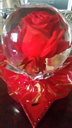 Rose In Water Globe Shapeyourminds Com