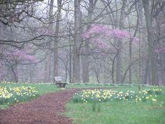 The Morton Arboretum, Lisle, IL
