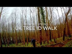 Let's take a stroll through the woodlands of south east UK in early April. Tree Identification, Early Spring, Bushcraft, Woodland, British, Outdoors, Neon Signs, Adventure, World