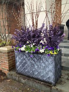 A combination of pansies, pussy willow and eucalyptus create a stunning early spring planter