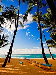 Maui, Hawaii - This weeks Travel Pinspiration: http://www.ytravelblog.com/travel-pinspiration-5-beautiful-islands/