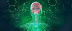 Cannabis Treatment for Parkinson's Disease - #MMJ #Parkinsons - https://www.greenrushdaily.com/2016/08/18/cannabis-treatment-parkinsons-disease/#utm_sguid=151367,69cbc1cf-9596-adfa-6c07-28d492634143