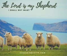 The Lord is my Shepherd. Knowing the Shepherd nature of the Lord is one of the most powerful revelations of His character in scripture. The Shepherd ensures that the needs of the sheep are properly taken care of.