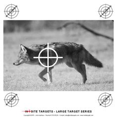 Pistol & Rifle The targets listed here are suited to pistol and rifle. Shooting Targets, Shooting Sports, 2nd Amendment, Hunting, Guns, Range, Animals, Weapons Guns, Olympic Shooting