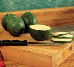 Squash Eight Ball Hybrid in The Big Seed Book from Park Seed on shop.CatalogSpree.com, my personal digital mall.
