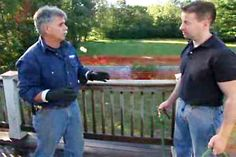Must-do spring project! Learn how to breathe new life into a weather-beaten wood deck