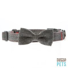 8b1d761165a9124efe3046d4357ce20b martha stewart pets dog accessories 448 best collars, harnesses, & leashes images dog accessories, dog