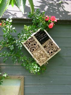 Insect Hotel – Practical Project