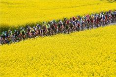 ツール・ド・ロマンディ第5&第6ステージ:ピノーが山岳頂上決戦を制す!遠回りした才能が開花!ステージ2位のザッカリンが最終個人TTも3位でまさかの総合優勝!総合カチューシャ1-2! : CYCLINGTIME.com