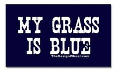 """Ever wondered what the phrase """"my grass is blue"""" means? Did you see it on the album cover of Lynyrd Skynyrd's Street Survivors? Maybe you just dig bluegrass music. """"My Grass Is Blue"""" started as a simple t-shirt design but has grown. Watch bluegrass videos, find bluegrass news and music, shop for the famous my grass is blue shirts and bumper stickers."""
