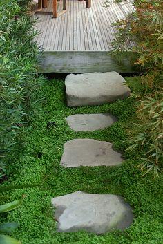 stone step & path. Love