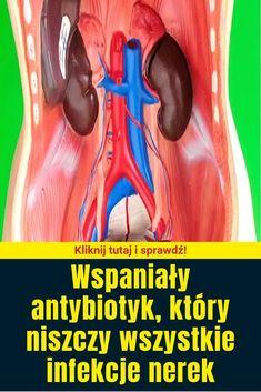 Wspaniały antybiotyk, który niszczy wszystkie infekcje nerek Healthy Skin, Movie Posters, Film Poster, Healthy Skin Tips, Billboard, Film Posters