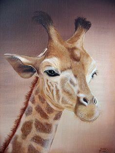 Girafe                                                                                                                                                                                 Plus