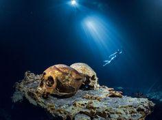 Snorkeler México