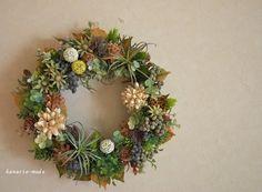 エアプランツとチスパ(30㎝)wreath