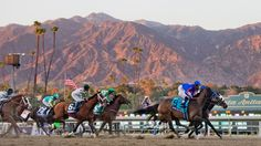 Get to know 2014 @breederscup contenders with the ABR Cheat Sheet!