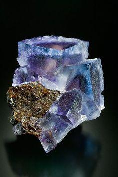 Blue Fluorites