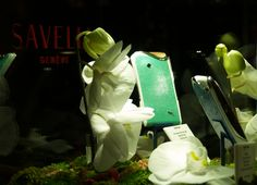 Switzerland, The Secret, Luxury, World, Crafts, Collection, The World, Crafting, Diy Crafts