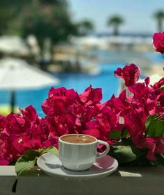 Sunday Coffee, Coffee Cafe, Coffee Break, Morning Coffee, Good Morning, Brown Coffee, I Love Coffee, Coffee Images, Coffee Pictures