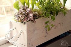 wine crate flower beds