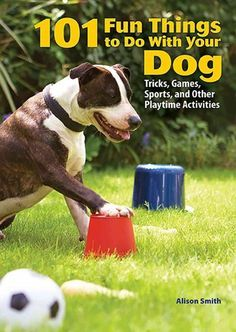 101 Fun Things to Do With your Dog [tricks, Games, Sports, and Other Playtime Activities] (Book) : Smith, Alison : Baker & TaylorDescribes a variety of ways for dog owners to have fun with their dogs, including games designed to match a breed's natural abilities, from outdoor scent games and speed tests to obstacle courses and sports for dogs.