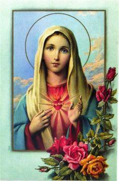 Piękny religijny obrazek przedstawiający Niepokalane Serce Najświętszej Maryi Panny. Na odwrocie obrazka znajduje się modlitwa Do Niepokalanego Serca Maryi. Obrazek wykonany jest ze sztywnego papieru, lakierowany. Format: 10 x 6,5 cm