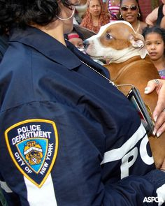 Thanks to our partnership with the NYPD, we've rescued even more animals and made more arrests than last year. Learn more about how we're working together to help animals here: http://www.aspca.org/blog/nypd-aspca-partnership-reports-record-breaking-number-animal-cruelty-arrests-and-rescues