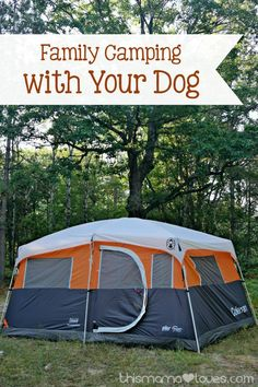 Family camping with your dog camping cornwall Camping With Kids, Family Camping, Tent Camping, Outdoor Camping, Outdoor Gear, Camping Gear, Outdoor Fun, Camping Storage, Camping Cabins