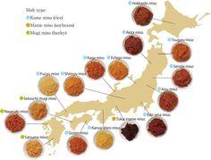 What Is Miso (Soybean Paste)?|仙台味噌醤油株式会社