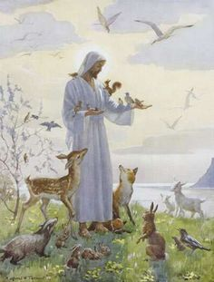 God loves everyone and I love him to. And Jesus's is not just on the cross he's in everyone's heart to I believe in you lord Jesus Christ you are my family Image Jesus, The Good Shepherd, Jesus Pictures, Jesus Is Lord, Christian Art, Christian Vegan, Religious Art, Jesus Loves, Holy Spirit