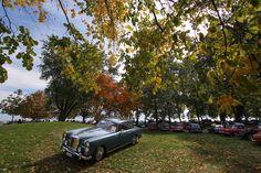 Alvis TE21 1965 British Car Show2015  - Morges Switzerland