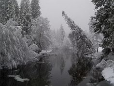 This image was taken along the Merced River during the middle of the winter.