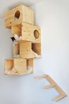 Деревянный домик для кошек
