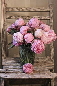 peonies...fresh cut from Flyboy Naturals in the spring & summer  http://www.flyboynaturals.com