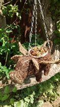 Hanging Basket Entry Number Thirteen #hangingbasket #garden #gardening #flowers #inspiration #summer