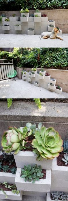 DIY Outdoor Planter Wall - would be nice faced with slate tiles or reclaimed… Succulent Outdoor, Diy Planters Outdoor, Outdoor Art, Garden Planters, Outdoor Gardens, Lawn And Garden, Home And Garden, Exterior, Back Gardens