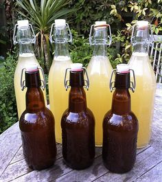 How to Make Nettle Beer - Great British Chefs