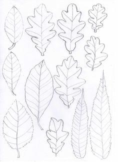 Felt leaf patterns